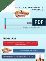 Estructura y Funcion de La Proteinas