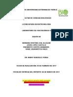 E5P4M1215-VR-corrección.docx