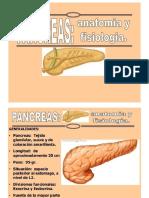 Anatomia y Fisiologia Del Pancreas