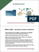 CBMS306606_nucleic acids_2-2.pdf