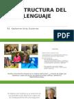 La Estructura Del Lenguaje