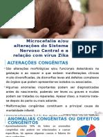 Microcefalia e Zika