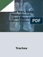 Chest Wall, Lung, Mediastinum,