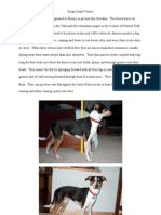 Kings Island Terrier Attributes