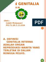 143128633 Ppt Genetalia Interna