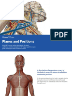 VisibleBody_Planes and Positions_2016.pdf