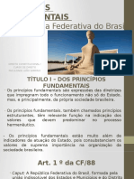 Principios Fundamentais