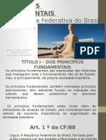 Principios Fundamentais