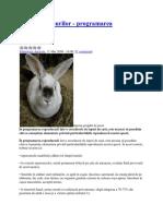 37721637-Creşterea-iepurilor