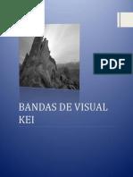 Bandas de Visual Kei