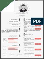 plantilla-curriculum-vitae-4.doc