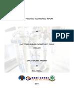 FPTFINAL REPORT.pdf