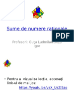 1_lectie._sume_de_numere_rationale.pptx