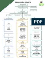 organigrama datos y tratamiento.pdf