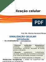 Aula11 Sinalização Celular