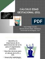 Cálculo Edad Gestacional (Eg) 2015