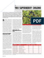 calafate_otro_superberry_chileno.pdf