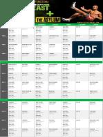 Body Beast, P90x, P90X2 and Insanity Hybrid pdf