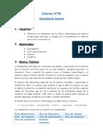 Informe Nº02
