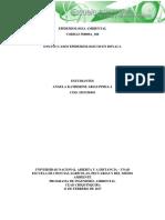 Ensayo-Epidemiologia Ambiental.pdf
