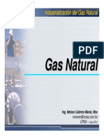 IND 101 U1 Introduccion Gas Natural