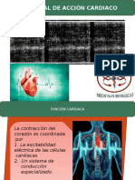 Potencial de Acción Cardiaco