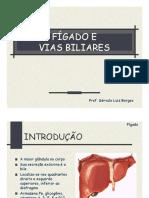 AULA 09. Fígado e Vias Biliares