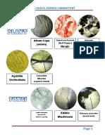 02 BIOLOGY LABORATORY.pdf