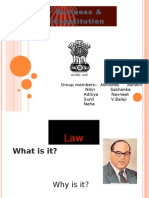 Business & Constitution