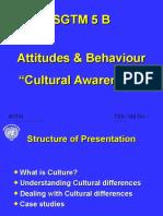 05 B Cultural Awareness.ppt