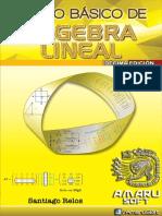 Algebra Lineal-Decima Edicion 100paginas