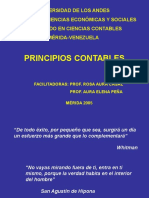 PCGA 2005