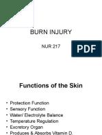 Nursing_Burn Injury PPT