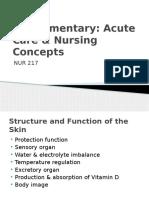 Nursing_Intro to Integumentary PP