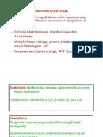 Metabolisme Pp