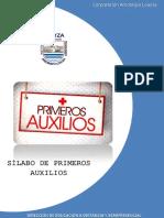 Syllabus de Prim-Auxinstal 1 Ultim
