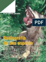 Revista Medio Ambiente - Radiografía de Una Especie - Carmen Alfonso - 2002