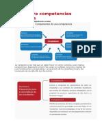 Las nueve competencias docentes.docx