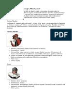 Arquetipos - Commedia Dell'Arte