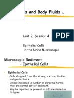 Unit2_4 Epithelial Cells