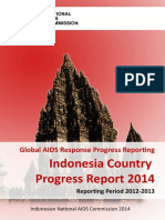 IDN Narrative Report 2014