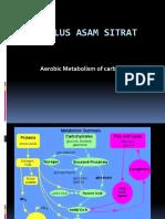 122769283-Siklus-asam-sitrat.pdf