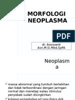 1.6.2.5 - Morfologi Neoplasma.ppt