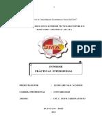 informe practicas-pre-profesionales