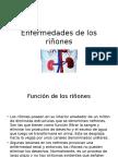 tratamiento para los riñones.pptx