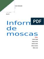 Investigacion de Las Moscas