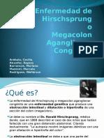 enfermedaddehirschsprung-111008125557-phpapp02.pptx