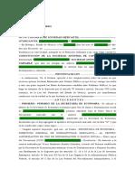 Escritura Constitutiva SA DE CV