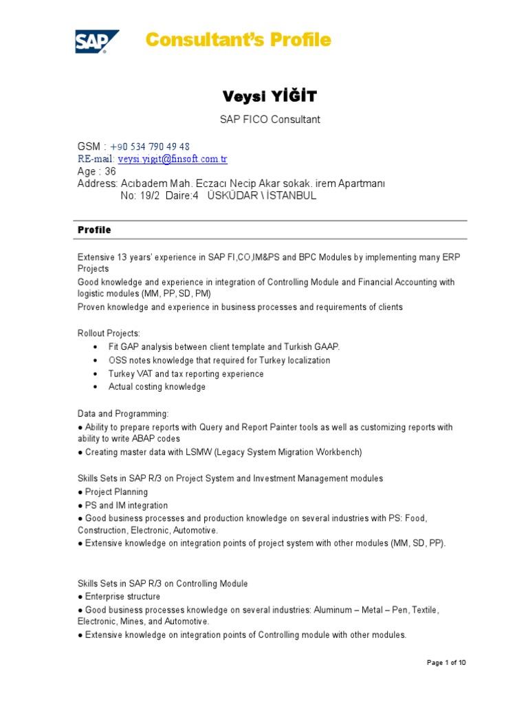 Cv Veysi Yigit En | Consultant | Accounting