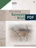 Harvesting Rainwater for Wildlife